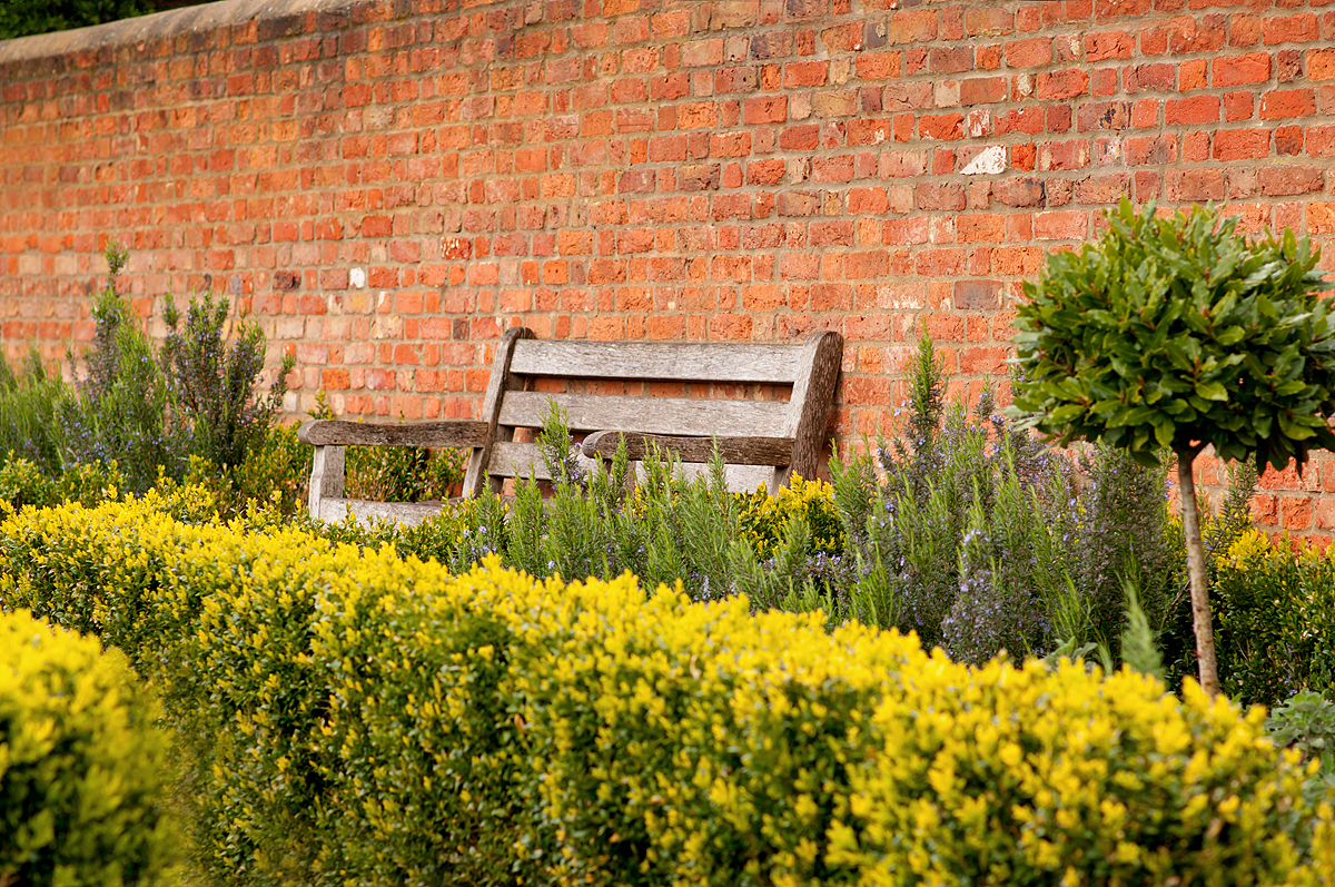 A bench to stop for a rest in Radnor Gardens