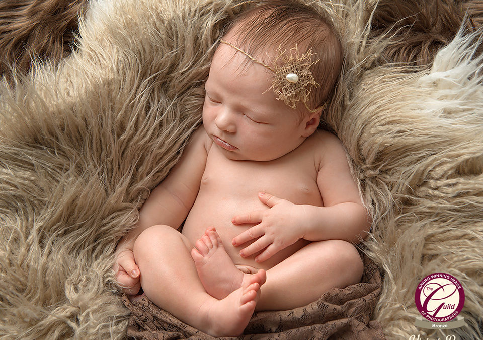 Two Bronze Bar awards for newborn photography