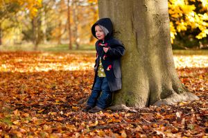 Autumn_Sessions_003_960px.jpg